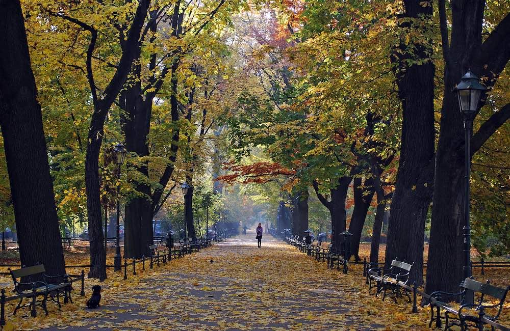Planty Park krakow